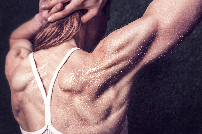背中の筋肉の解剖学的解説とトレーニング方法