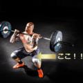 大腿四頭筋の解剖学的解説とトレーニング方法【太もも前側の筋トレ】